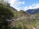 羅馬公路、拉拉山〈巴陵古道、櫻花、神木〉之旅20150224:DSC06033.JPG