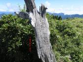 大霸尖山、小霸尖山、伊澤山、加利山(大霸群峰)20190902:IMG_1393.JPG