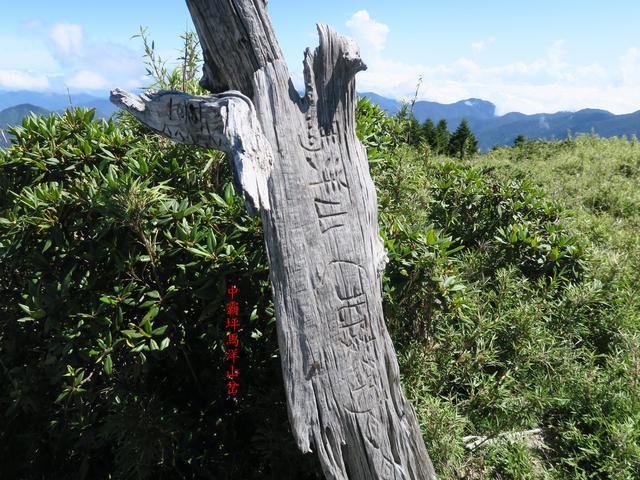 IMG_1393.JPG - 大霸尖山、小霸尖山、伊澤山、加利山(大霸群峰)20190902