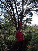 夫婦山、拉拉山、塔曼山縱走20151115:DSC01533.JPG