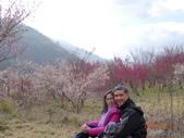 104年武陵農場櫻花季一日行20150211:DSC05489.JPG