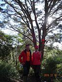 夫婦山、拉拉山、塔曼山縱走20151115:DSC01536.JPG