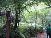 三層瀑布下猴硐130623:三層瀑布下猴狪 020.jpg