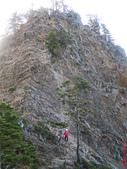 桃山、喀拉業山、品田山、池有山+布秀蘭山三日行(第三天):IMG_3292.JPG