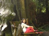 基隆地政公會杉林溪之旅(2013):杉林溪之旅 044.jpg