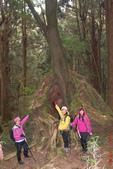 塔塔加、玉山林道、石山、兒玉山、東水山、特富野古道(塔特縱走)第 二 天20210203:IMG_1514.JPG