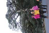 塔塔加、玉山林道、石山、兒玉山、東水山、特富野古道(塔特縱走)第 二 天20210203:IMG_1232.JPG
