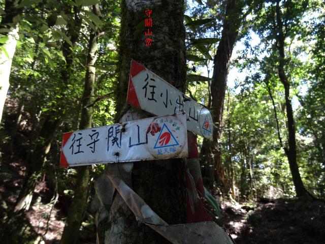 DSC08863.JPG - 關刀山西峰、關刀山、丁字山、小出山、松風山縱走(關松縱走)
