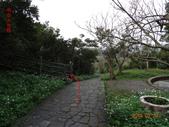 海興步道、大武崙山、海岸山脈稜線O行走20150220:DSC05837.JPG