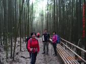 司馬庫斯神木群越嶺鴛鴦湖外圍出100林道20150715:DSC01669.JPG