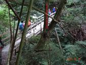 司馬庫斯神木群越嶺鴛鴦湖外圍出100林道20150715:DSC01679.JPG