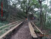 司馬庫斯神木群越嶺鴛鴦湖外圍出100林道20150715:DSC01672.JPG