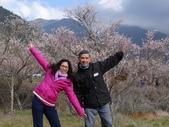 104年武陵農場櫻花季一日行20150211:DSC05476.JPG