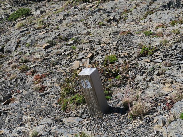 IMG_2170.JPG - 雪山主峰下翠池、北稜角(第二天)20190917