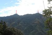 羊咩寮棧道、木馬古道、五元二角、雲嶺之丘O型走+蓬萊瀑布(第二天):IMG_7999.JPG
