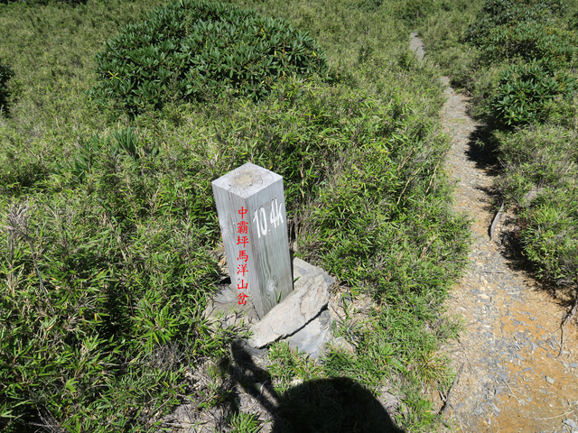IMG_1390.JPG - 大霸尖山、小霸尖山、伊澤山、加利山(大霸群峰)20190902
