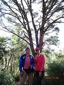 夫婦山、拉拉山、塔曼山縱走20151115:DSC01538.JPG