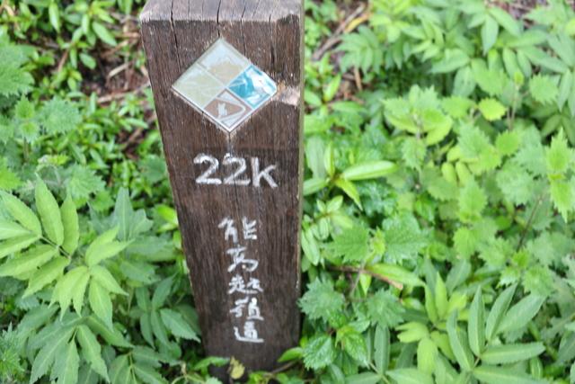 能高越嶺道全段縱走二日行(第二天)20200331:IMG_0663.JPG