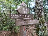 桃山、喀拉業山、品田山、池有山+布秀蘭山三日行(第一天):IMG_2929.JPG
