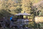 神木村、神阿古道縱走、姊妹潭、水山神木(第一天)20210202:IMG_1117.JPG