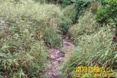 西巒大山130511:~g_2769009112223250946_IMG_8521.jpg
