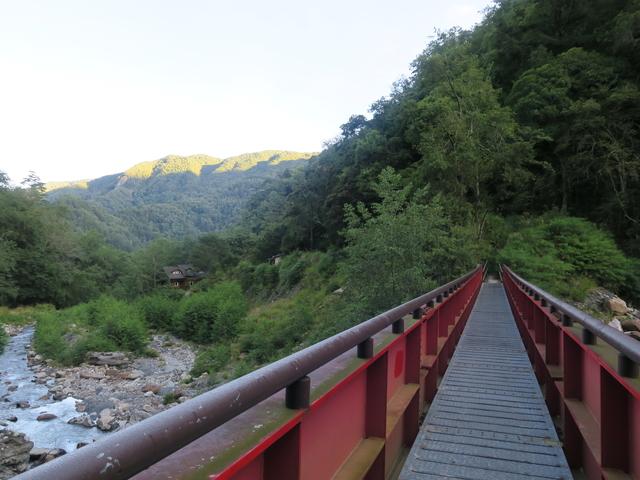 九九山莊→大鹿林道東線20190903:IMG_1437.JPG