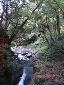 司馬庫斯神木群越嶺鴛鴦湖外圍出100林道20150715:DSC01684.JPG