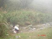 桶后林道20131121:桶后林道來回走 024.JPG