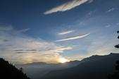 小笠原山、對高岳山、眠月線半程、阿里山園區O型走(第三天)20190716:IMG_9594.JPG