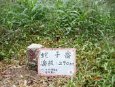 三三O行縱走20131109:三,三.O行走 006.jpg