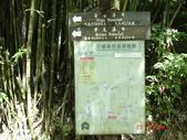 三層瀑布下猴硐130623:三層瀑布下猴狪 006.jpg