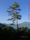 司馬庫斯神木群越嶺鴛鴦湖外圍出100林道20150715:DSC01681.JPG