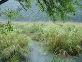 御恩山.神祕湖20131012:御恩山.神祕湖20131012 022.jpg