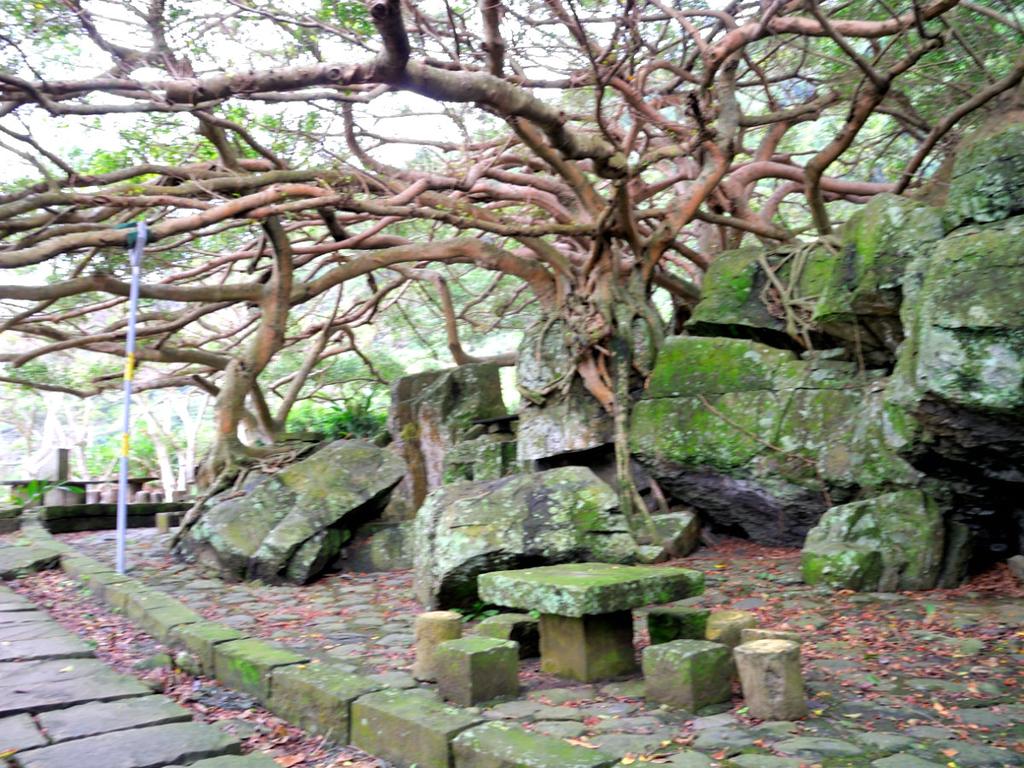 N.20150207北關海潮公園:DSCN8148.JPG
