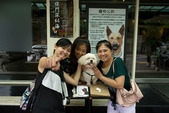 10107寵物餐廳supportTNR:P1000157.jpg