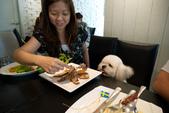 10107寵物餐廳supportTNR:P1000109.jpg
