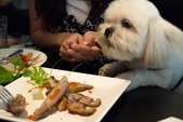 10107寵物餐廳supportTNR:P1000124.jpg
