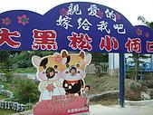 98.7.25桃園一日遊第三站大黑松小倆口-愛情故事館:不能免俗的.JPG