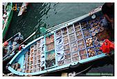 2009-02-08 香港西貢遊:IMG_8327.jpg