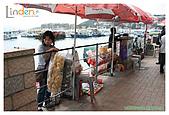 2009-02-08 香港西貢遊:IMG_8337.jpg