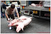 2009-01-25 香港年初一:IMG_6959.jpg