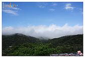 2009-02-28 陽明山花季:IMG_1797.jpg