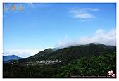 2009-02-28 陽明山花季:IMG_1799.jpg