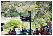 2009-02-28 陽明山花季:IMG_1811.jpg
