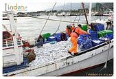2009-01-01 元旦宜蘭之旅:IMG_4741.jpg