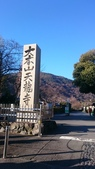 X 相片 V 迷路全世界:京都-天龍寺 (3)