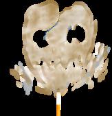 X 彩圖 V 寓視圖:菸
