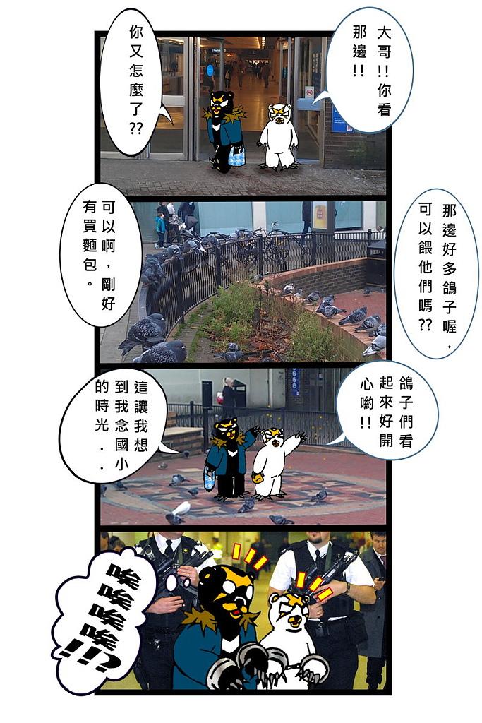 X 短篇漫畫 V 迷路全世界:禁餵鴿子