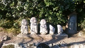 X 相片 V 迷路全世界:京都-天龍寺 (4)