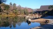 X 相片 V 迷路全世界:京都-天龍寺 (6)